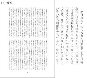 【MS明朝】左側はA5に8.5ポイントの文字を流し込んでみたイメージ(21行×2段)。※以降同じ
