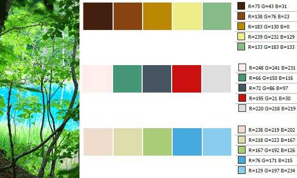 color20